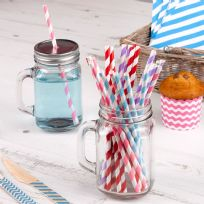 Carnival Multi Coloured Paper Straws (25)